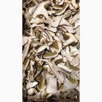 Куплю гриби