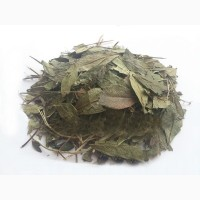 Барвинок (трава) 1 кг