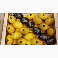 Лимоны оптом в Испании