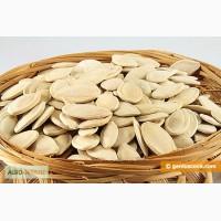 Семена тыквы продам