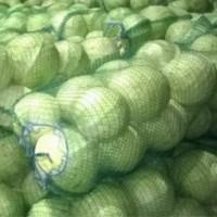 Куплю овощи: капуста, морковь, лук. Оптом, за наличные. Самовывоз
