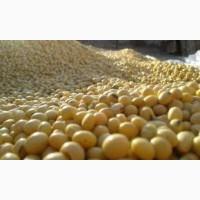 Закупівля сої. Самовивіз з поля, господарства, елеватора