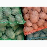 Продам картофель отличного качества. Урожай ЕС