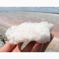 Соль озера Сиваш оптом
