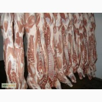 Продаем свинину в п/т в шкуре и обрезную, Днепропетровская обл