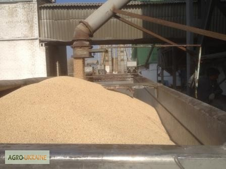 Заказчик в праве останавливать работу по уборке при влажности зерна более 15%.