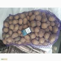 Продам средний и семеной картофель