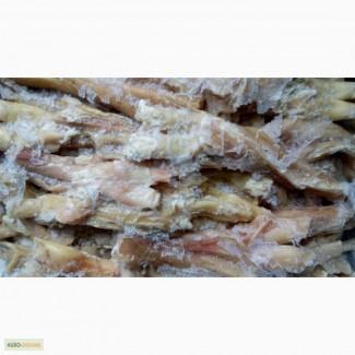 Закупляєм сухожилля яловичі / Закупаем сухожилия говяжьи