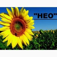 Нео (108-110) середньоранній гібрид соняшнику