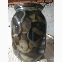Продам гриби маринованние-опята, свинушки, белий, лисички, Моховики, Трутовик, подберезов
