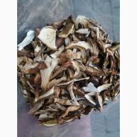 Продам Карпатський білий гриб сушений