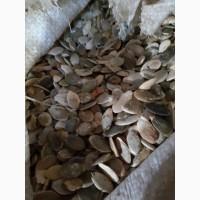 Продам відходи гарбузового насіння