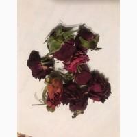 Бутон сушеної рози
