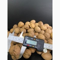 Продам грецкий орех, 28+, 30+, ядро 1/2, 1/4 светлое, беж, янтарное, микс