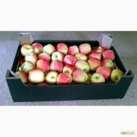 Ящик картонный для яблок