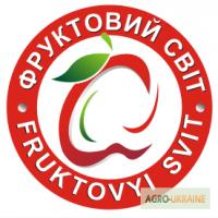 ТОВ Фруктовий Світ закуповує ДОРОГО по всій Україні квасолю мілку