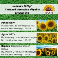 Новинки 2020! Посівний матеріал гібридів соняшника