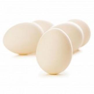 Продажа куриных яиц (С1, С0)