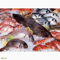 Рыба и море продукты