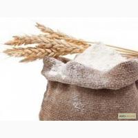Мука оптом пшеничная высшего сорта в/с