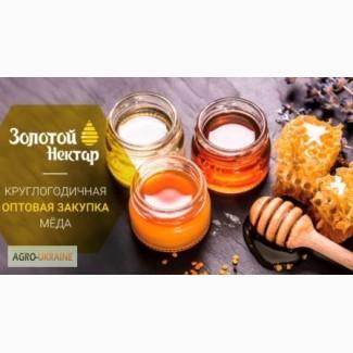 Куплю мед соняшника оптом дорого! (без антибіотика)