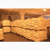 Срочно продам сахар оптом от поставщика. Заявка от 500 тонн