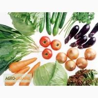 Продам семена Морковки, в ассортименте. Высокая всхожесть, опт и розница