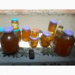 Продам мед с экологически чистого р-на, гречка, разнотравье, донник, подсолнух