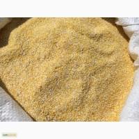 Крупа кукурузная оптом