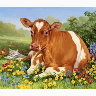 Продам молоко смачне та з хорошою жирністю.від 1000 л в день з доставкою