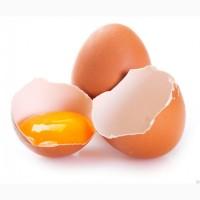 Яйцо столовое куриное С-0, С-1, С-2. Доставка