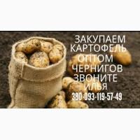 Куплю Картофель опт Красных сортов