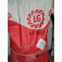 Семена подсолнечника Лимагрейн 5543 КЛ Limagrain LG ЛГ 5543КЛ Евролайт