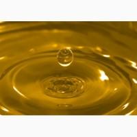Продам масло подсолнечное нерафинированное