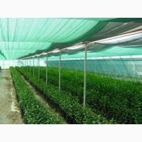 Затеняющая сетка Karatzis зеленая (8х50) 50%