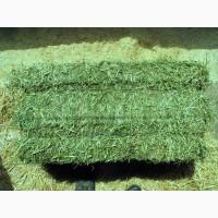 Alfalfa Hay, Alfafa Pellets, Alfalfa Cubes