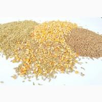 Зерновые. Зерноотходы. Кукуруза. Пшеница. Соя