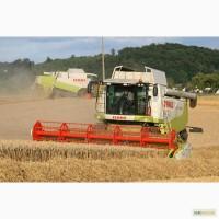 Услуги уборки зерновых масличных культур комбайнами