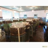 Продам підрощену личинку коропа та травоядних риб