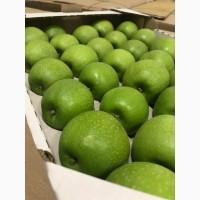 Продам яблуко: Грені Сміт, Голден Делішес, Фуджі, Ред Чіф