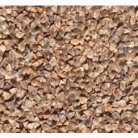 Куплю зерно гречки