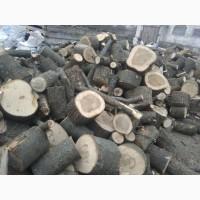 Продам дрова 10 м 3