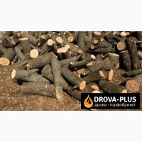 Drova-plus продаж дрова, торфобрикет Ківерці