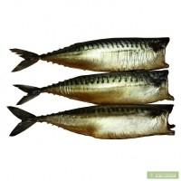 Готовая рыбная продукция от производителя