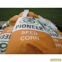 Продам семена кукурузы пионер PR39G12 / ПР39Г12