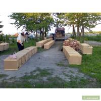 Продам пчелопакеты Карпатка в Днепропетровской обл