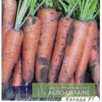 Не дорого, Фирменные семена моркови Bejo, Никерсон - Цваан
