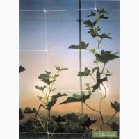 Шпалерная (огуречная) сетка для поддержки растений Отринет (Tenax, Италия)