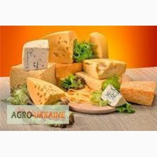 Куплю сырный продукт