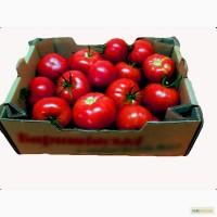 Ящик для помидоров